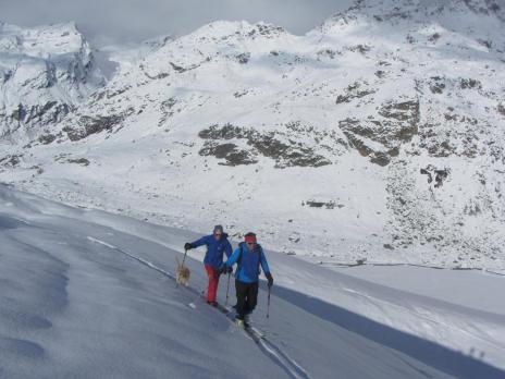Ski de randonnée en Tarentaise - secteur Ruitor